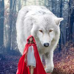Kvinna går i en skog med en stor vit varg