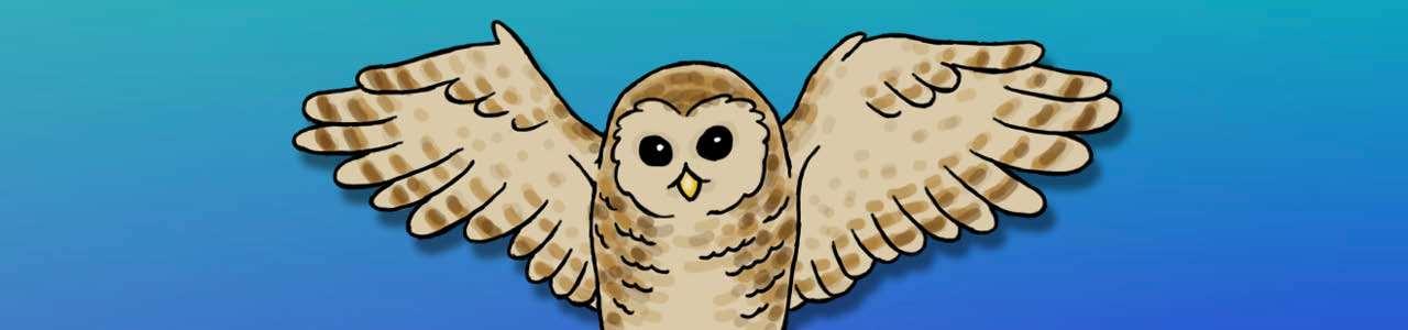 Bild på en tecknad uggla som flyger mot blå bakgrund